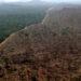 Derrubada de Floresta na Amazônia