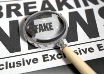 Guia da OEA para combate as Fake News