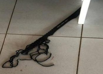 Arma ninja SC
