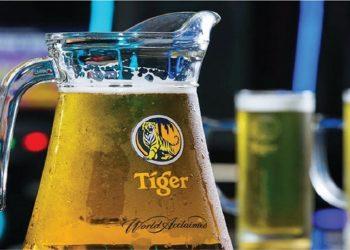 Cerveja Tiger no Brasil